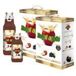 Apple + blackcurrant juice